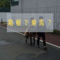 箱根で乗馬?