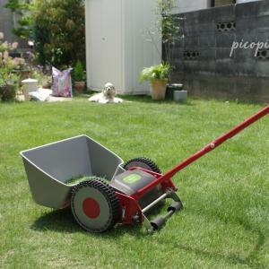 *今年最初の芝刈り*