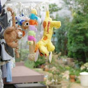 *おもちゃの洗濯*