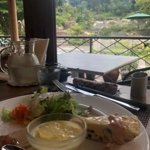 【ランチ】ハーブガーデンカフェ光の穂