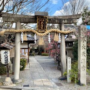 京都市上京区・水火天満宮で梅と猫を愛でる♡