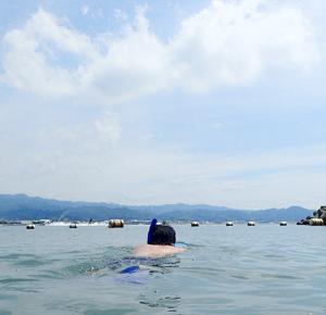 愛媛鹿島の海水浴場で初めてのシュノーケリング