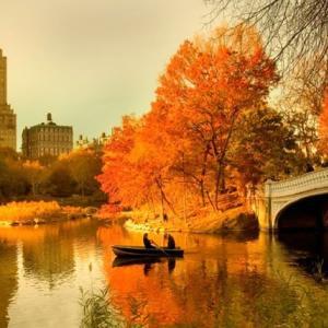 紅葉が映える秋に行きたい