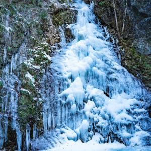 【東京・檜原村】秋川渓谷でマス釣りと払沢(ほっさわ)の滝を楽しむ