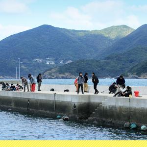 五島列島で爆釣り!?ほぼ休みなく釣り続けられるってホント?