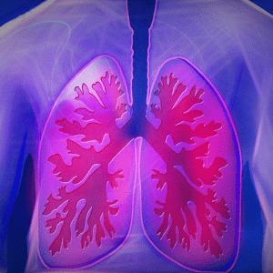 【意外と知らない】日中と睡眠中の酸素不足が与える影響|マクログ