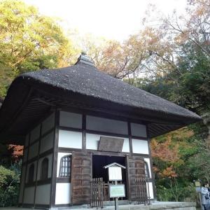 今日は北鎌倉の明月院に行きました
