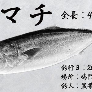 【自作】15分でデジタル魚拓は簡単に作れる!?使用ツールと作成手順&ポイントを伝授します