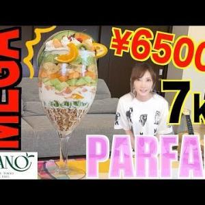 【大食い】超メガサイズフルーツパフェ!TAKANO高級フルーツ使用[¥65000]6キロ[8000kcal]【木下ゆうか】