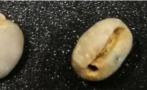 欠点豆が入ってるコーヒー豆は味に影響を与えます。