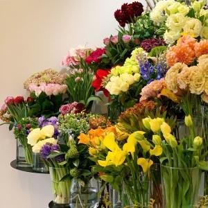 今日も色とりどりのお花たちと一緒にお待ちしています(2019.12.08)