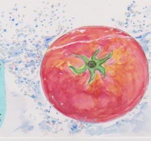 絵手紙の書き方・トマトの絵の素材