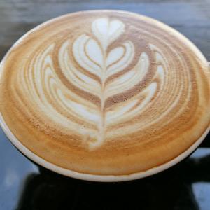 Vongo&Anchor(ボンゴ・アンド・アンカー)の美味しいコーヒーとモーニングプレートでブランチ