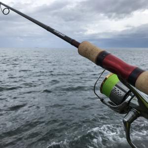 雨の日は釣れるっていうから釣りに行ってきた