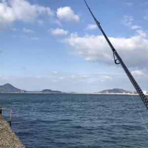 シーバス釣りの勉強になる釣りYouTuberを見つけたぞ