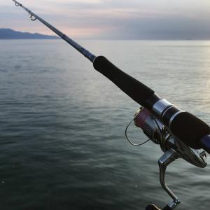 釣行 サバのボイルに遭遇→大きい魚には出会えず