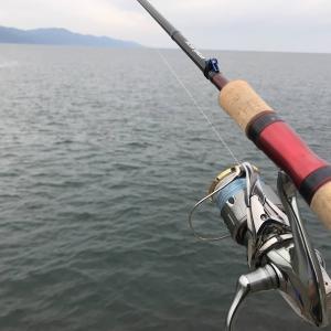 釣行 ちょい投げ→釣果は無いが季節の移ろいは感じた