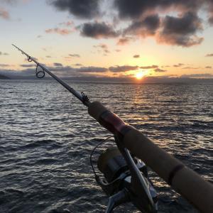 釣行 遠征する→釣れない→友達は釣れる→(´・ω・`)
