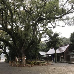 愛媛ドライブ 愛媛のパワースポット(?)伊曽乃神社へ行ってみた話