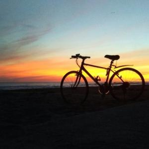 【自転車通勤をはじめよう】自転車通勤を安全に続けていく工夫「夜対策」