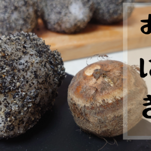 里芋のおはぎ 里芋とうるち米で作るおはぎ