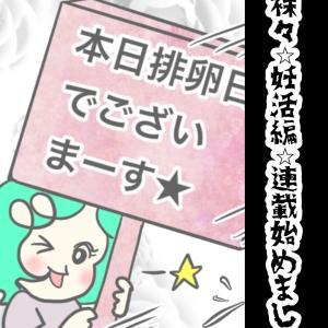 妊活奮闘記④
