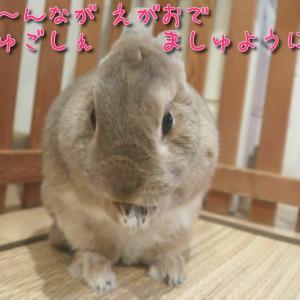 ♪乃野さん♡きにさんの願い事は(*´ `*)♪