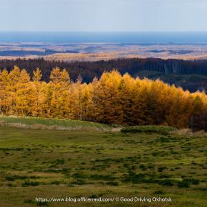 オホーツクの秋:大空町東藻琴