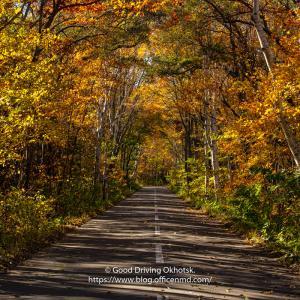 サロマ湖周辺で出会う秋の風景