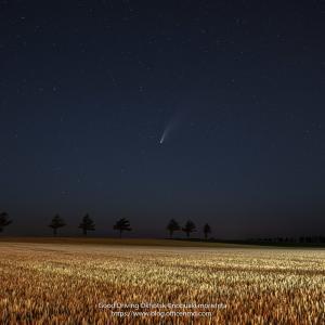 ネオワイズ彗星を撮りに家族でドライブに(^^)
