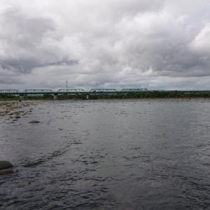 九頭竜 堰堤下流 五松橋