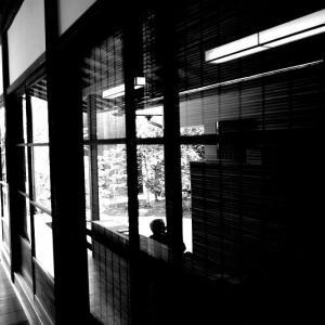 リコーGR3 試し撮り(ハイコントラスト白黒) 6