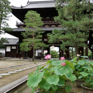 万福寺と三室戸寺 2