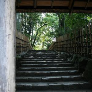 2006.3.11 一乗寺