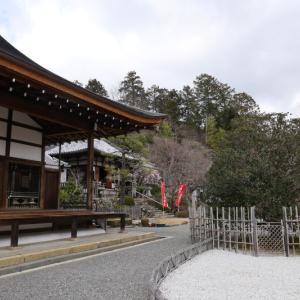 嵐山・嵯峨野 冬の風景 12