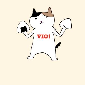 ブラジリアンワックスでVIO処理するのが最高っていうお話