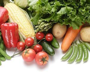 食費節約はふるさと納税が一番!楽天市場での注文が一番お得。