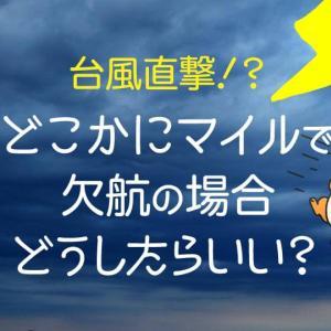 どこかにマイル行き先決定!でも台風で欠航!?どうしたらいいの?