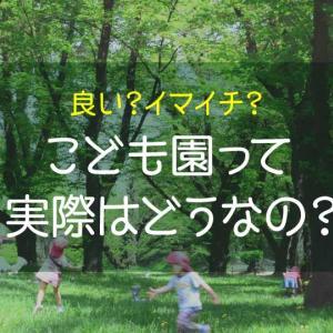 幼稚園とこども園の違いは?実際に通って感じたメリット・デメリット