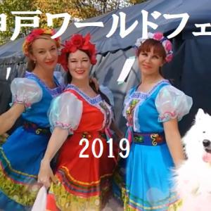 サモエド さくら KOBEワールドフェスティバル2019