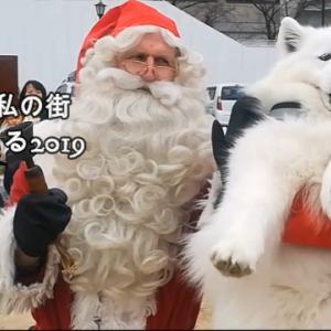 サモエドさくら尼崎城 サンタが私の街にやってくる2019.12.7