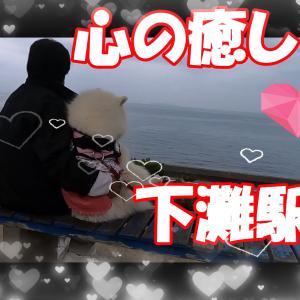 サモエドさくら癒しの海の見える無人駅 下灘駅四国愛媛