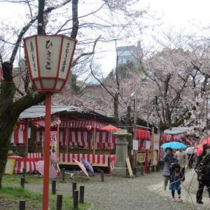 京都3日目祇園のライトアップ再開!フランス人と友達になる方法?