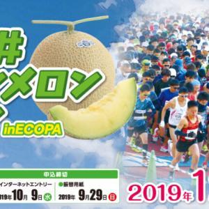 人生初フルマラソン出場:第31回「袋井クラウンメロンマラソン」初マラソンシリーズ(1)- ランネタ