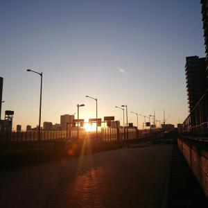 東京マラソンに向けての準備と減量 経過- ランネタ