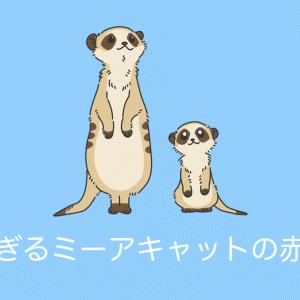 日本の公園の「ミーアキャットの赤ちゃん」が照れ屋さんで可愛すぎる!【台湾人の反応】