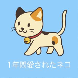 日本のネコが1年間愛され続けた結果!顔の変化が凄すぎると話題に!【タイ人の反応】