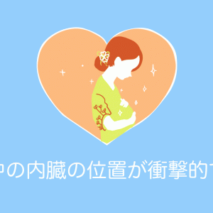 日本人が描いた「妊娠中の内臓の位置イラスト」が衝撃的すぎる!【台湾人の反応】