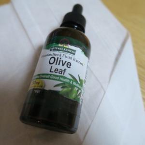 オリーブリーフとオレガノオイル│天然の抗菌・抗真菌剤