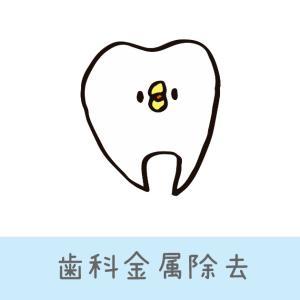 アトピーがきっかけで家族全員、歯科金属除去しました。おススメ歯科と注意点